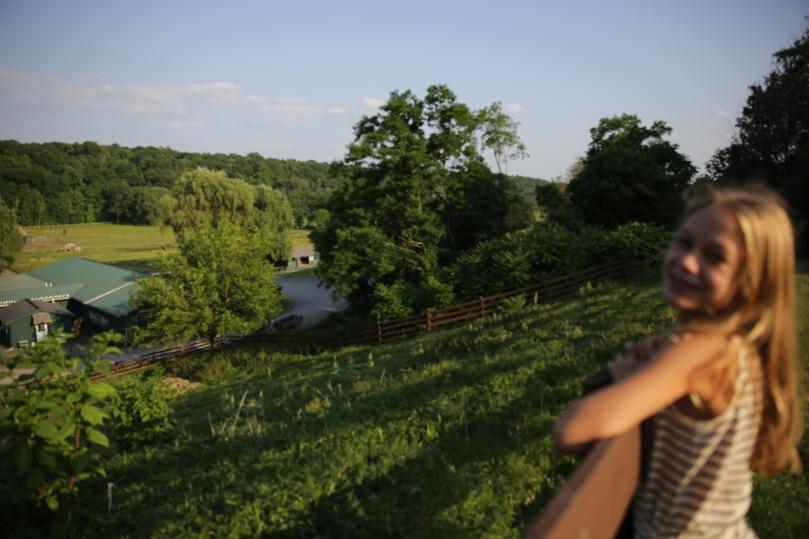 Catskill Farm Sanctuary